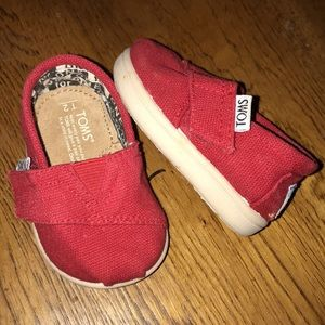 Baby Toms 2T